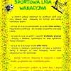 Sportowa Liga Wakacyjna