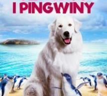 """Szajbus i pingwiny"" – film familijny Kino Pokój"