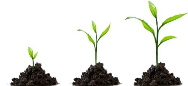 Szansa na obniżenie kosztów szkolenia kadry w MŚP