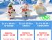 Ferie zimowe w OSiR – I tydzień
