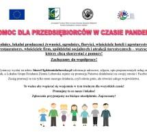 LGD Ziemia Lubawska – wsparcie dla przedsiębiorców w czasie pandemii