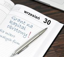 Grant dla mikro i małych firm