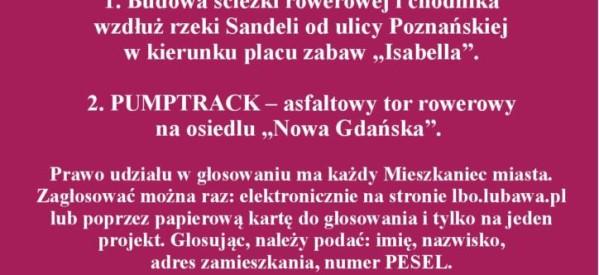 Lubawski Budżet Obywatelski – głosujemy na projekty!