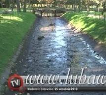 Rewitalizacja Łazienek Lubawskich