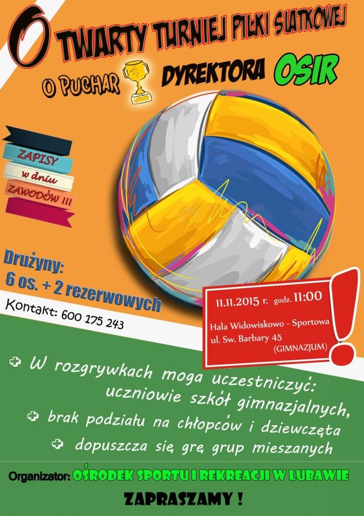Plakat Siatkówka